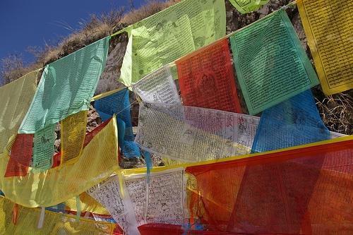 Seine Heiligkeit – der 14. Dalai Lama auf Video