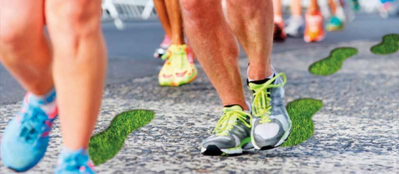 Alsterlauf Marathon