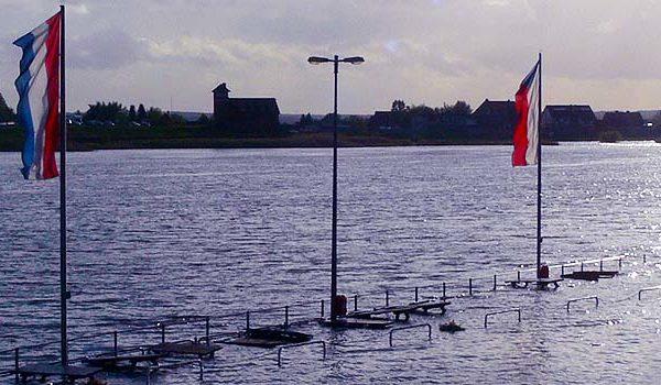 Ruder-Regatta Hamburg-Allermöhe an der Elbe