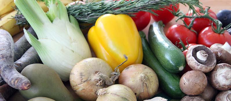 veganfach – Vegane Food- und Lifestyle-Messe