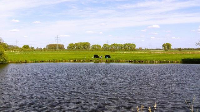 Angler Im Hamburger Umland