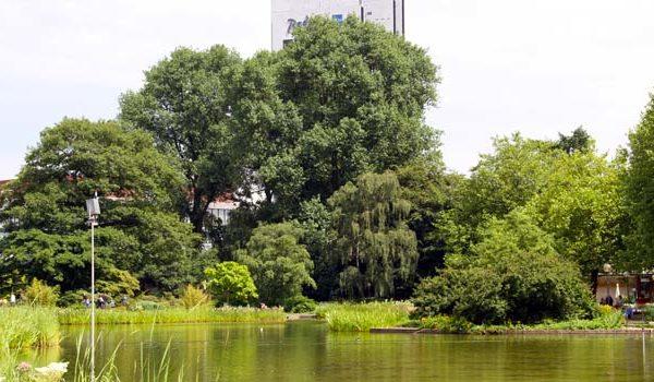 Naturwunder in Planten und Blomen Hamburg