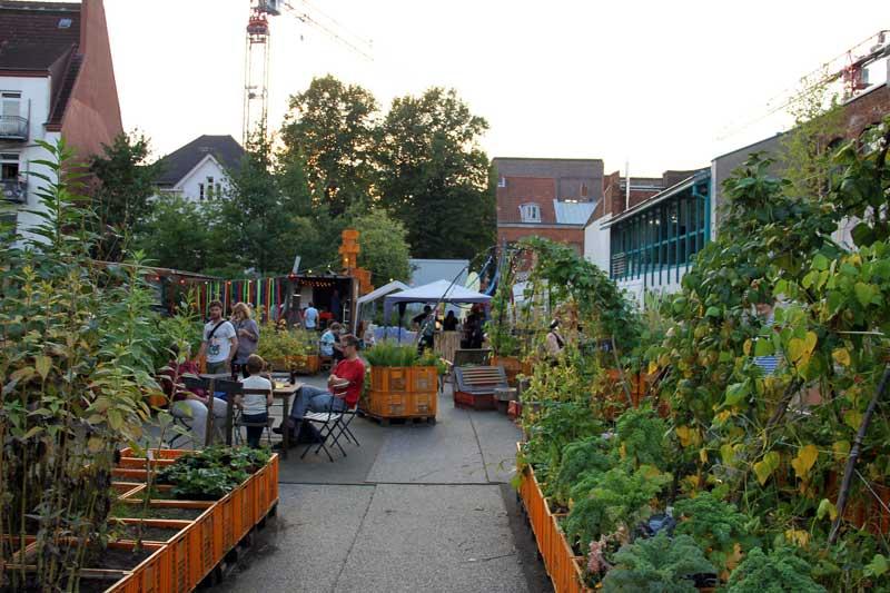 urban gardening in hamburg die gr nem gemeinschafts oasen