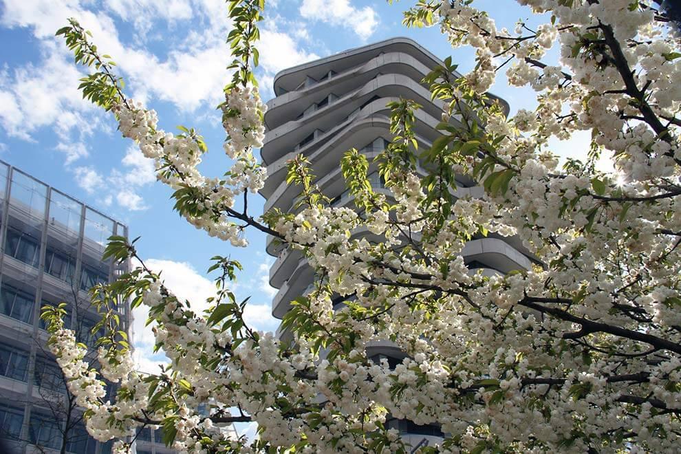 veranstaltungstipps zum wochenende in hamburg vom 29 april bis zum 1 mai. Black Bedroom Furniture Sets. Home Design Ideas