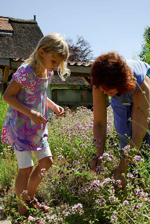 Ferien auf dem Lande: 5 Wochen Sommerspaß im Freilichtmuseum am Kiekeberg