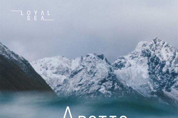 Artic Advent