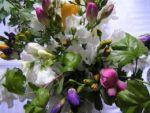 Blumen Frühling Sommer und verschenken