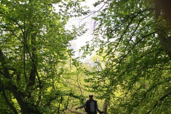 Peter Wohlleben auf der Michselwiese. Foto: Hamburger Wald in Rahlstedt