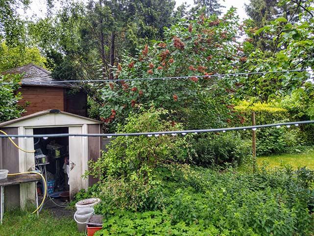 Welcher Garten passt zu mir? Der Gartentyp-Test von Haus:RAT gibt jetzt die Antwort