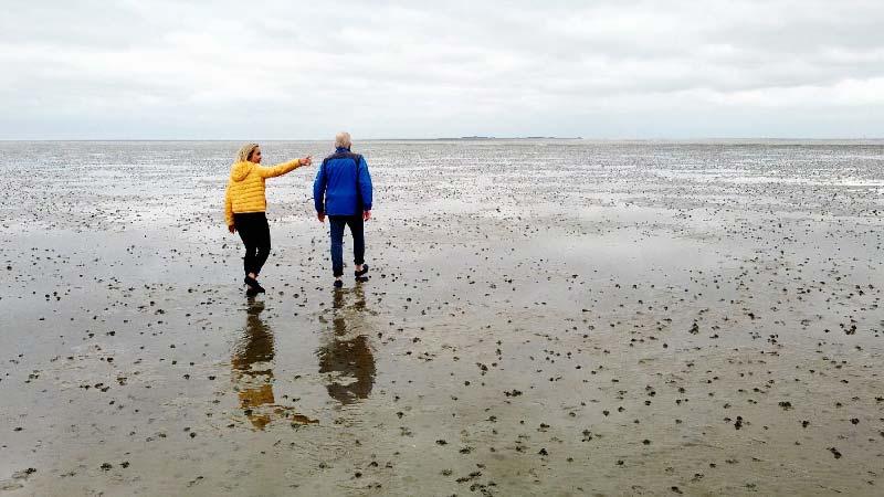 Das Wattenmeer an der Nordseeküste